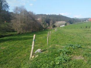 Área autocaravana en Cubelas «Área de la Granja Casecha» en, Lugo