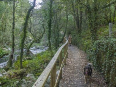 Área autocaravana en Carballiño «Área de Arenteiro» en, Ourense
