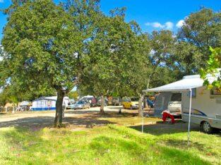 Área autocaravana en Malpartida de Plasencia «Área Parque de Monfragüe» en, Cáceres